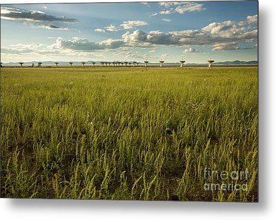 Lush Very Large Array Metal Print