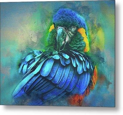 Macaw Magic Metal Print by Brian Tarr