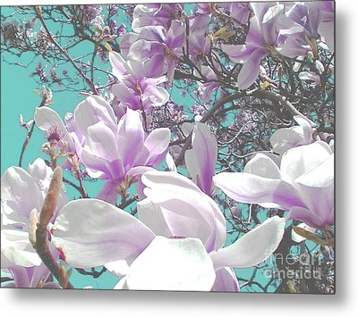 Metal Print featuring the photograph Magnolia Charm by Rebecca Harman