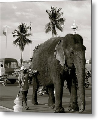 Metal Print featuring the photograph Mahout And Elephant by Louise Fahy