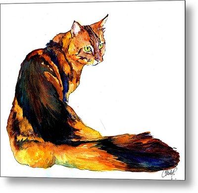 Maine Coon Cat Portrait Metal Print by Christy  Freeman
