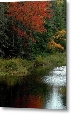 Maine Stream In The Fall Metal Print
