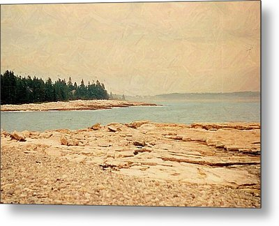 Maine Summer Metal Print by Desiree Paquette