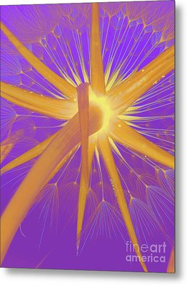 Make A Wish Metal Print by Robert Ball