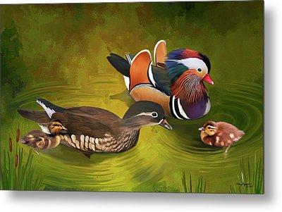 Mandarin Duck Family Metal Print