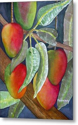 Mango One Metal Print by Terry Arroyo Mulrooney