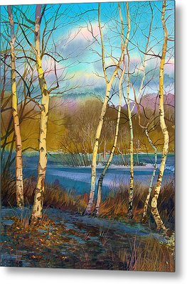 March. Birches Metal Print