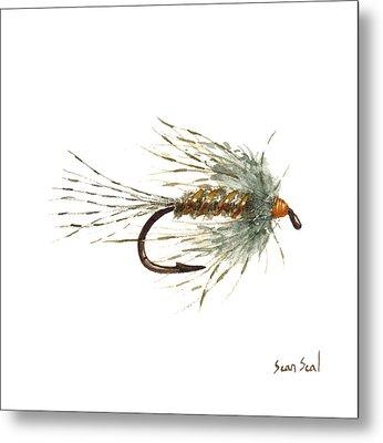 March Brown Spider Metal Print by Sean Seal