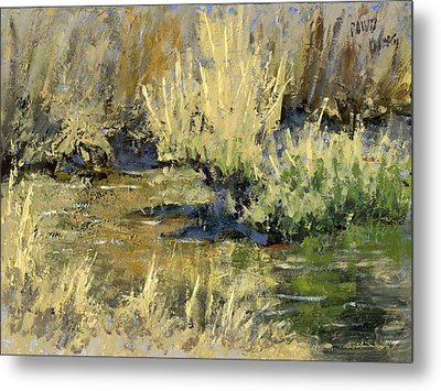 Marsh Twilight Metal Print by David King