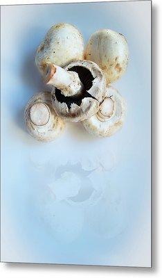 Marvellous Mushrooms Metal Print
