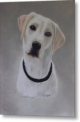 Maxie Metal Print by Janice M Booth