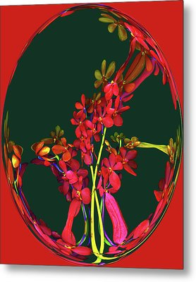 Meant To Amuse Metal Print by Carol Kinkead