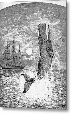 Melville: Moby Dick Metal Print by Granger