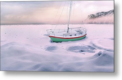 Metal Print featuring the photograph Memories Of Seasons Past - Prisoner Of Ice by John Poon