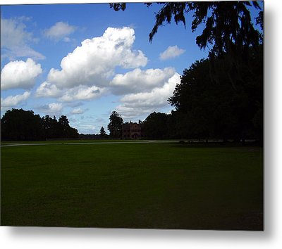 Middleton Place Metal Print by Flavia Westerwelle