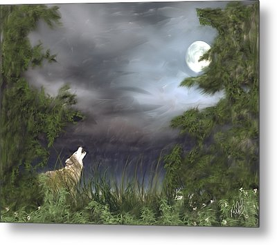 Midnight Blue Metal Print by Barb Kirpluk