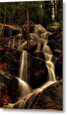 Quaking Aspen Falls Along Tioga Pass  Metal Print