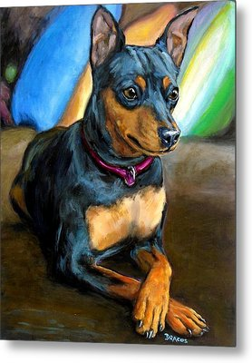 Miniature Pinscher Formal Metal Print by Dottie Dracos