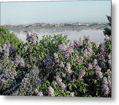 Mist In The Valley Metal Print by Dorothy Berry-Lound