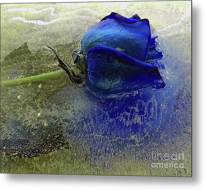 Misty Blue Metal Print by Terry Foster