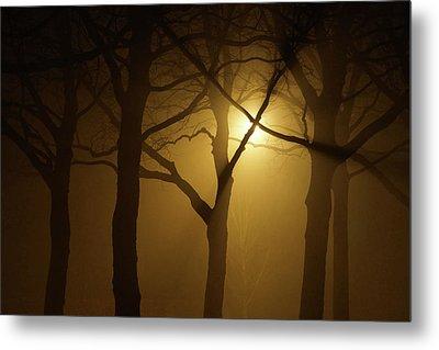 Misty Cross Metal Print by Erik Tanghe