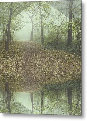 Misty Forest Metal Print by Thubakabra