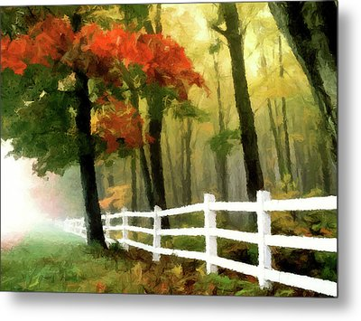 Misty In The Dell P D P Metal Print by David Dehner