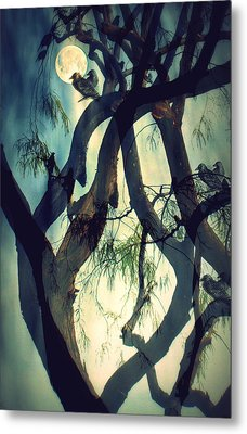 Misty Morning-sold Metal Print