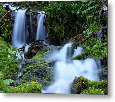 Misty Waters Metal Print by DeeLon Merritt