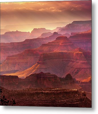 Mn1733 Metal Print by Mikes Nature