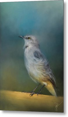 Mockingbird On A Windy Day Metal Print by Jai Johnson