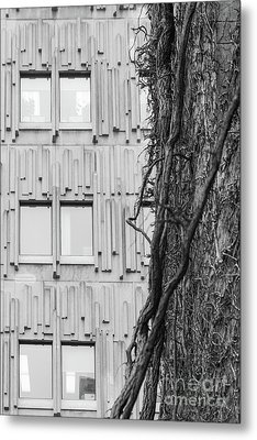 Modern And Nature Metal Print