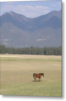 Montana Ranch Metal Print by Lisa Patti Konkol