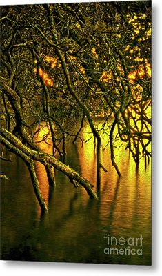 Moody Water Metal Print