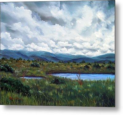Moody Wetlands Metal Print by Laura Iverson
