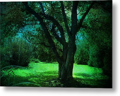 Moon Lit Metal Print by John Rivera