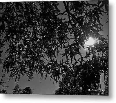 Metal Print featuring the photograph Moonlight by Betty Northcutt