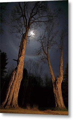 Moonlight Sentinels Metal Print