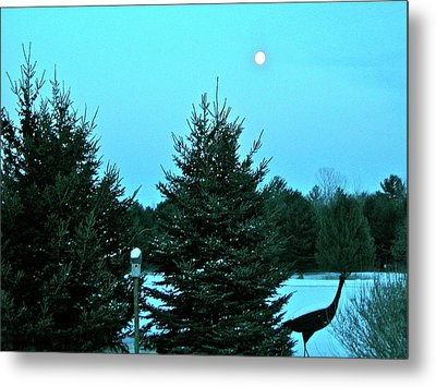 Moony Blue Metal Print by Randy Rosenberger
