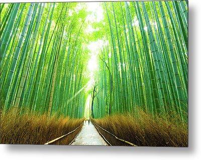 Morning Arashiyama Bamboo Forest People Walking Metal Print