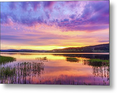 Metal Print featuring the photograph Morning Fire by Dmytro Korol