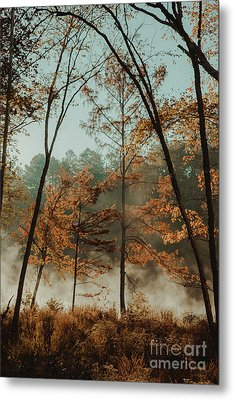 Metal Print featuring the photograph Morning Fog At The River by Iris Greenwell