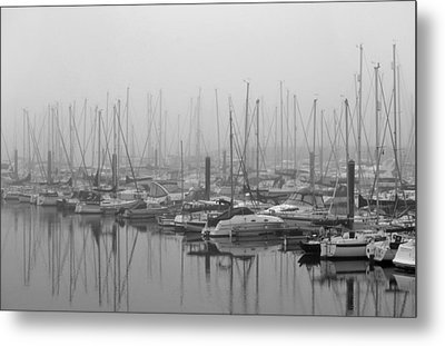 Morning Fog Metal Print by Terence Davis