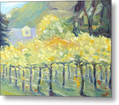 Morning In Napa Valley Metal Print by Barbara Anna Knauf