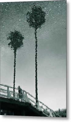 Metal Print featuring the photograph Morning by Kevin Bergen