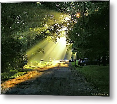Metal Print featuring the photograph Morning Light by Brian Wallace