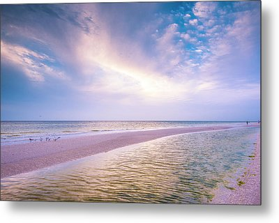Metal Print featuring the photograph Morning Show by Steven Ainsworth