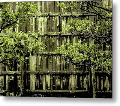 Mossy Bamboo Fence - Digital Art Metal Print by Carol Groenen