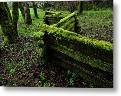 Mossy Fence 5 Metal Print by Bob Christopher