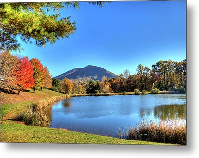 Mount Jefferson Reflection Metal Print